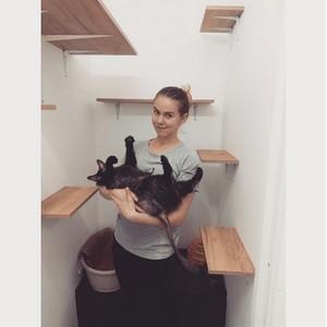 Зоогостиница для котов и кошек «4Cats» в Санкт-Петербурге