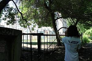 Активисты ОНФ в Челябинской области посетили дворы, исключенные из программы благоустройства