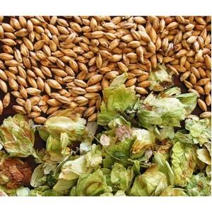 129 тонн солода ячменного из Белоруссии ввезено в Томскую область в марте 2016 г