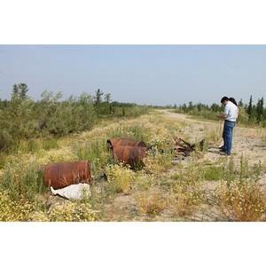 Активисты ОНФ на Ямале обнаружили несанкционированные свалки в Приуральском районе