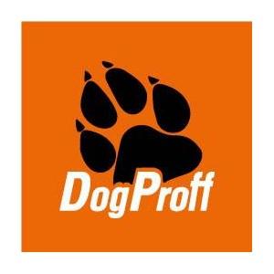 Отзыв DOGProff-дрессировка собак в Израиле