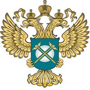 Учреждение Минобороны России нарушило закон при проведении торгов, связанных с продажей леса