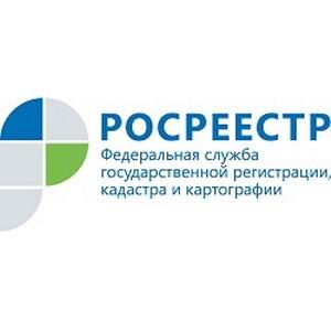 Интервью с директором филиала ФГБУ «ФКП Росреестра» по Ульяновской области И.В. Калининой