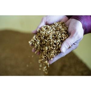 «САН ИнБев» готово делиться агроинновациями с омскими фермерами