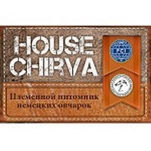Питомник «HOUSE CHIRVA» поделился успехами