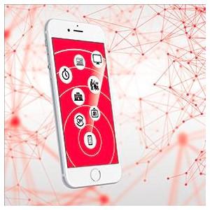 Vileda Professional разработала мобильное приложение для клининговых компаний