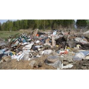 О выявлении Россельхознадзором несанкционированной свалки в Томском районе