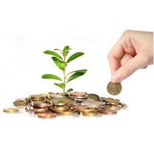 Помощь в получении банковских кредитов для действующего бизнеса