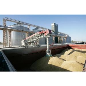 Об экспорте зерна и продуктов переработки по Ростовскому филиалу ФГБУ «Центр оценки качества зерна»