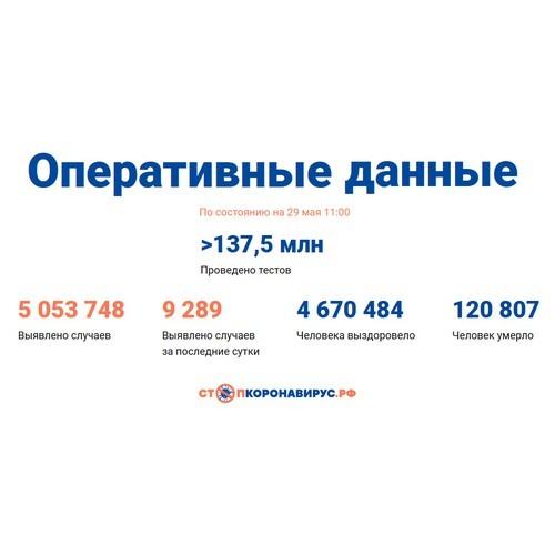 Covid-19: Оперативные данные по состоянию на 29 мая 11:00