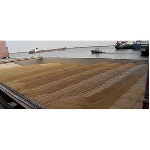 Более 788 тыс. тонн сельхозгрузов ушло на экспорт в апреле через Ростовский речной порт