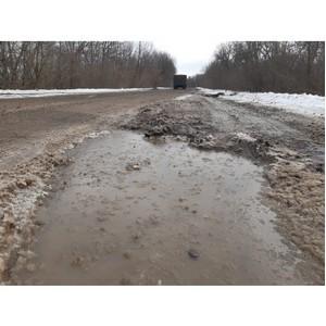 ОНФ просят отремонтировать региональную дорогу в Семилукском районе