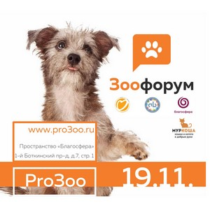 В Москве пройдет форум в защиту животных