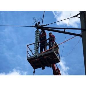 На ЛЭП Владимирской области установлены устройства, защищающие птиц от поражения электрическим током