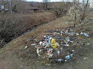 Активисты ОНФ обнаружили более 25 свалок в гаражных кооперативах Юго-Западного района Кирова