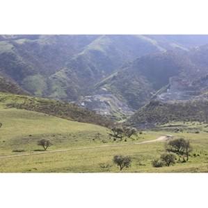Активисты ОНФ обеспокоены состоянием уникального памятник природы «Талгинская долина»
