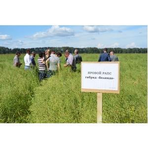 Жидкие азотные удобрения повысили урожайность у кузбасских аграриев