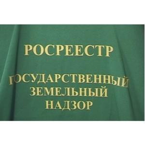 Челябинский Росреестр: о нарушителях земельного законодательства
