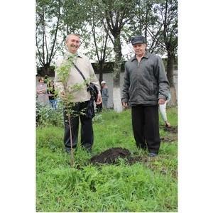 «Катавский цемент» провел акцию «Посади дерево - помоги планете!»