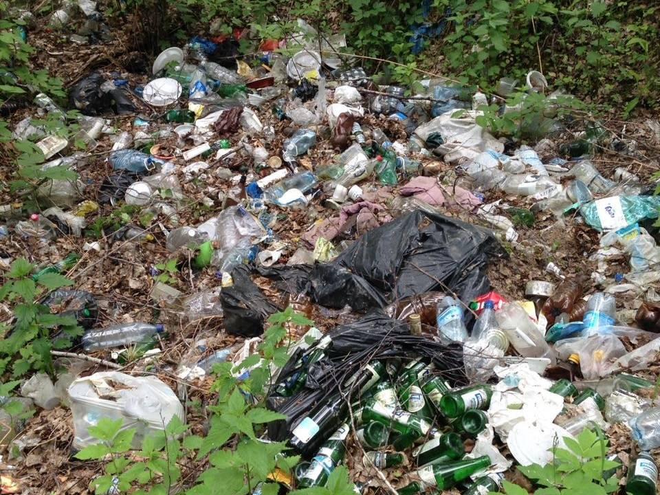 Челябинские эксперты ОНФ очистили от мусора прибрежную зону и дно озера Большой Кисегач