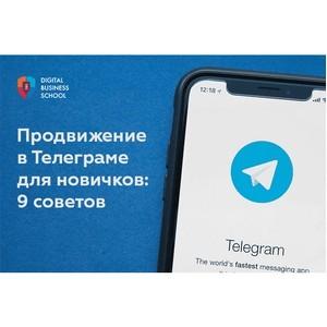 Продвижение в телеграме для новичков: 9 советов
