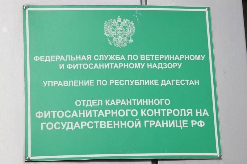 О фитосанитарном контроле импортных фруктов и овощей в Республике Дагестан