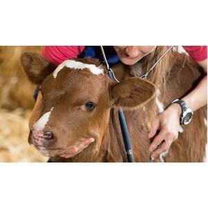 Приглашаем работников ветеринарной индустрии к участию в салоне «Жизнь фермера 2019»