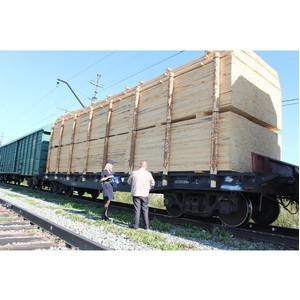 В Томске выявлена контрабанда леса на 40 миллионов рублей
