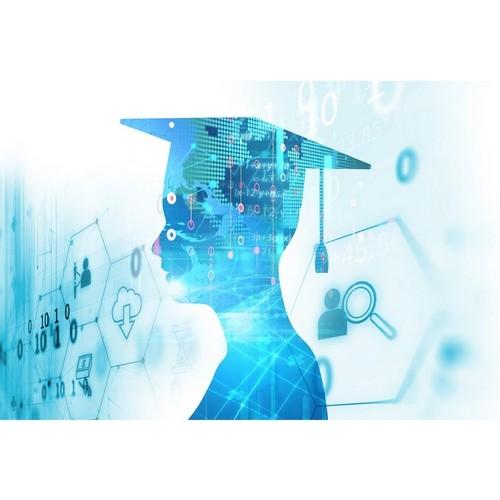 Учебные заведения адаптировали программы в рамках цифровизации