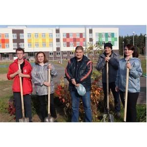 Активисты ОНФ в Коми приняли участие в посадке Аллеи памяти
