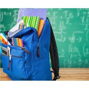 Единовременная выплата на детей школьного возраста: частые вопросы