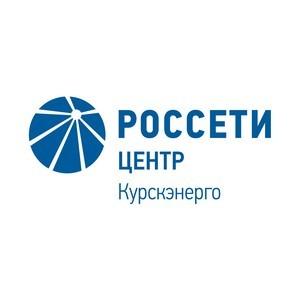 Губернатор Курской области вручил сотруднику Курскэнерго госнаграду