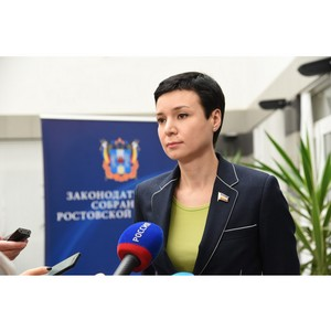 По 18 основным направлениям донским парламентом будет реализовано послание президента в 2018 г