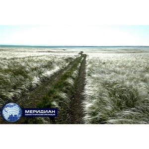 Экологи на территории Оренбургской области могут прибегнуть к аэрофотосъемке