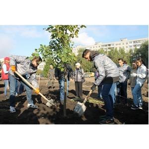 Активисты ОНФ посадили деревья в новом сквере в Уфе