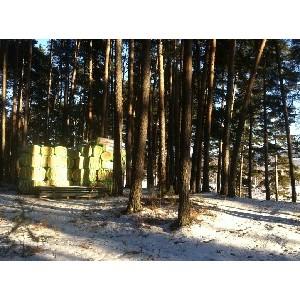 ОНФ в Челябинской области отстоял пруд