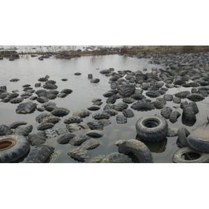 Активисты ОНФ в Югре подвели промежуточные итоги реализации проекта «Генеральная уборка»