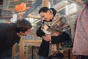 В Москве пройдёт большая выставка животных из приютов