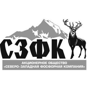 СЗФК направит в бюджет Кировска 105 млн рублей