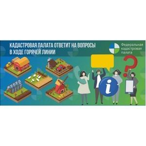 Петербуржцев проконсультируют по электронным сервисам