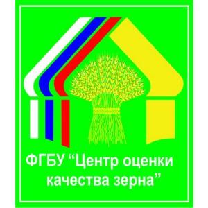 Итоги работы ФГБУ «Центр оценки качества зерна»
