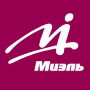 Успешный франчайзинг под брендом «Миэль»