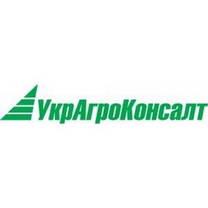 УкрАгроКонсалт: экспорт кукурузы в текущем сезоне беспрецедентно высокий