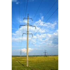Около 15 млн руб. направили энергетики на природоохранные мероприятия