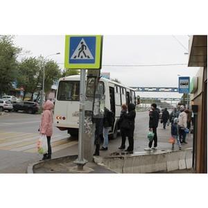 ОНФ призвал власти увеличить количество автобусов на маршруте №17