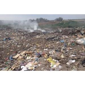 Из-за мусора страдает почва