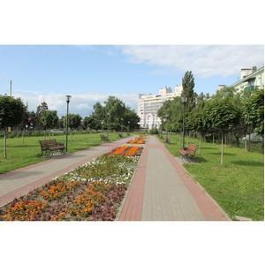 Активисты ОНФ предложили властям расширить парк Патриотов в Воронеже