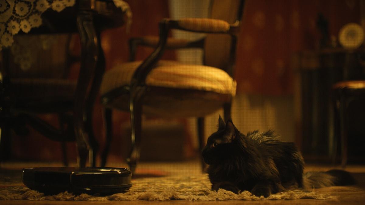У кота Бегемота из музея Булгакова появился необычный робот-помощник