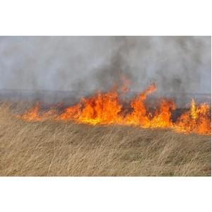 В забайкальском Росреестре призывают соблюдать противопожарные меры