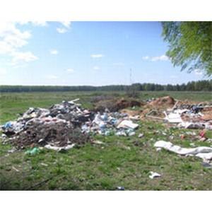 В Петропавловском районе обнаружена несанкционированная свалка ТБО